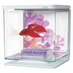 Akwarium betta marina flower 2 l 13355