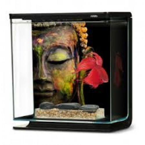 Hagen akwarium 3l betta buddha 4347