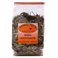 Herbal babka lancetowata 70g - zioła dla chomika, świnki, królika, szynszyla