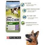 Purina adult dog chow jagniecina 11+3 kg promocja
