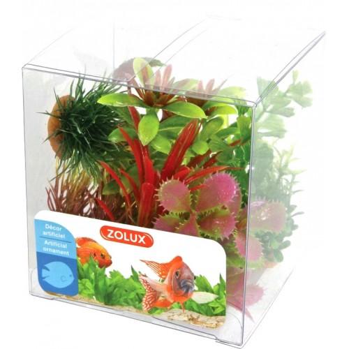Zolux dekoracja roślinna pudełko mix 6 szt zestaw 1