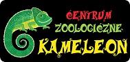 Kameleon sklep zoologiczny